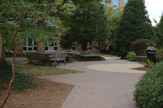 Plenty of green space for students and faculty moving throughout campus.